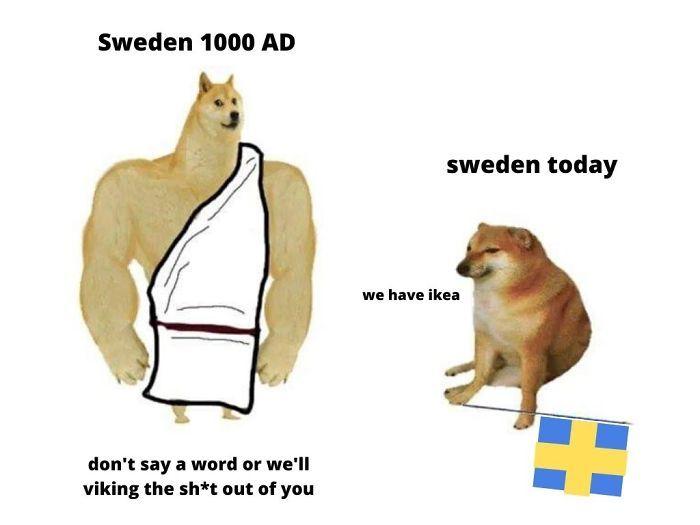 Then Now Dog Meme Memes Dankest Memes Funny Memes