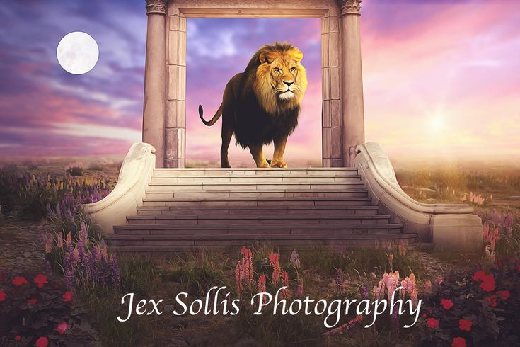 Excited to share the latest addition to my #etsy shop: Lion Stone Table Digital Backdrop, Narnia inspired backdrop http://etsy.me/2CUoi7N #art #photography #brown #pink #digitalbackdrop #digitalbackground #photoshop #composite #photomanipulation