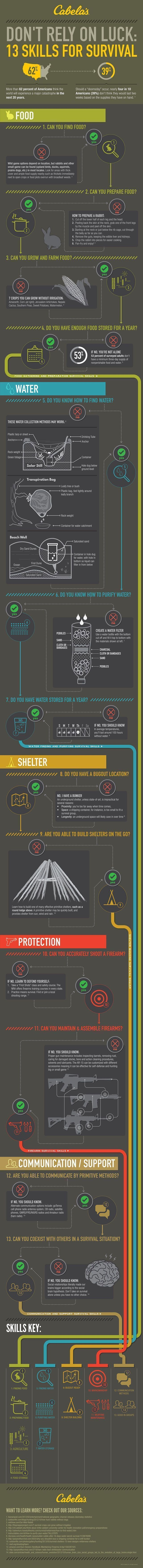 13 Top Survival Skills | Learn Now, Survive Later | Doomsday Prepping For Beginners Or Seasoned Prepper by Survival Life at http://survivallife.com/2015/12/09/survival-skills-infographic/ #survivaltips