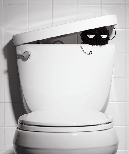 Large furry germ peeking out toilet tank   Go nuts on lurking germs with these bacteria-targeting tricks that work.