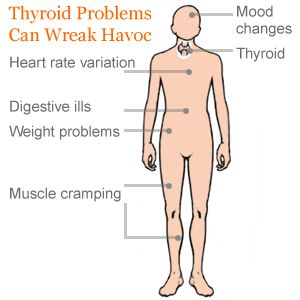 Symptoms of Thyroid Problems - Thyroid Problems in Women - RealAge  good article on Thyroid