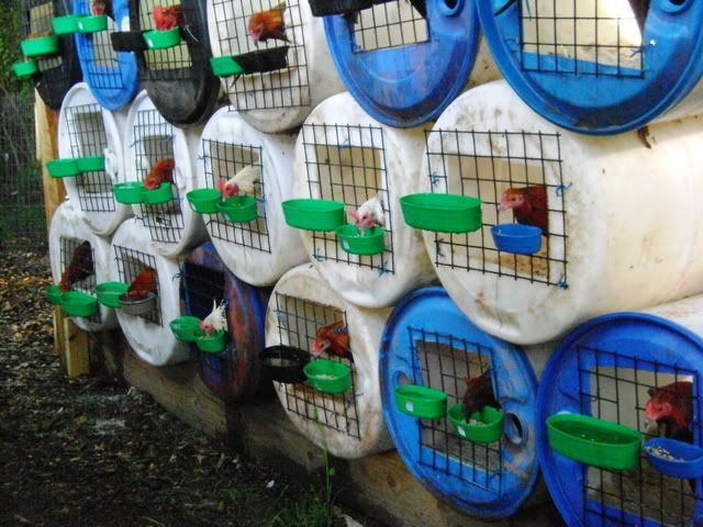 Dry Well Plastic Barrel Google Search Chicken Pen Chicken Cages Chickens Backyard