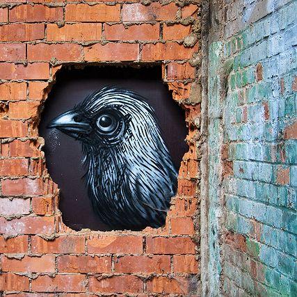 Roa Ghent Street Artist Grafitti Animals worldwide Banksy ...