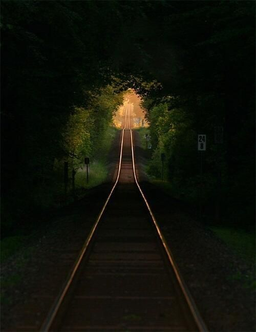 Railroad tree tunnel in France