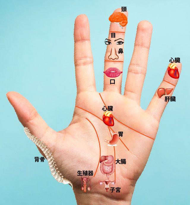 足の裏と同じように、手のひらにも全身の縮図のようなツボが分布していることを知っていますか?