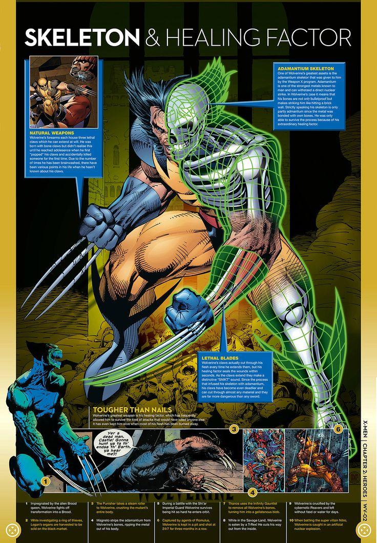 Wolverine Facts: Powers and Abilities   The Wolverine Movies is about to be released and there are some that need to catch up on their Wolverine Facts. Take the time read these panels and get educated on your favorite adamantium hero.