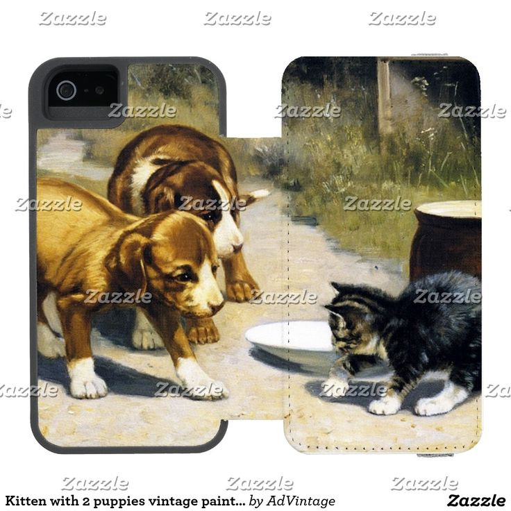 Kitten with 2 puppies vintage painting wallet case for iPhone SE/5/5s