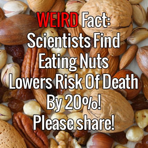 Weird Fact: Scientists Find Eating Nuts Lowers Risk Of Death By 20%!	►►	http://herbs-info.com/blog/weird-fact-scientists-find-eating-nuts-lowers-risk-of-death-by-20-percent/?i=p