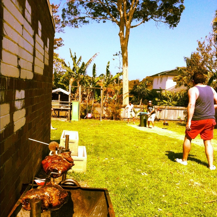 how to make a cricket pitch in your backyard