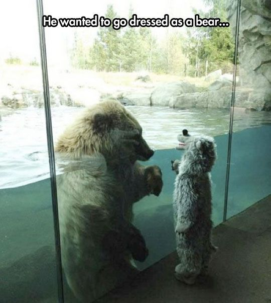 Unbearably Cute // funny pictures - funny photos - funny images - funny pics - funny quotes - #lol #humor #funnypictures