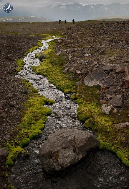 Up on the Plateau, Edziza by Trekking Partners, via Flickr