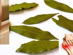 Použijte list této rostliny na vyléčení křečových žil, bolesti kloubů, zlepšení paměti a migrény!