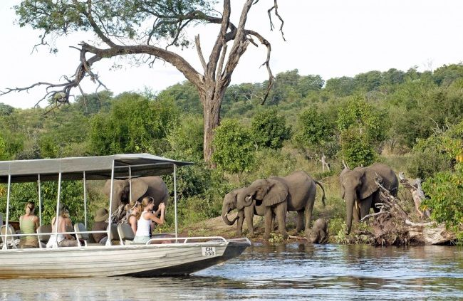 5 Days Zimbabwe and Victoria Falls Fly – In Tour