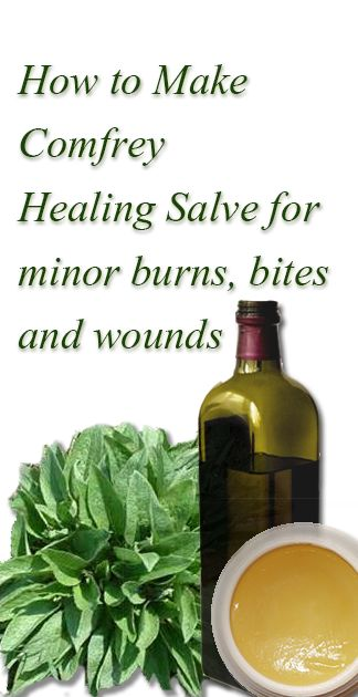 How to Make Comfrey Healing Salve  We make it every year and love it. Nothing heals summers little bits, stings, dings and cuts better.