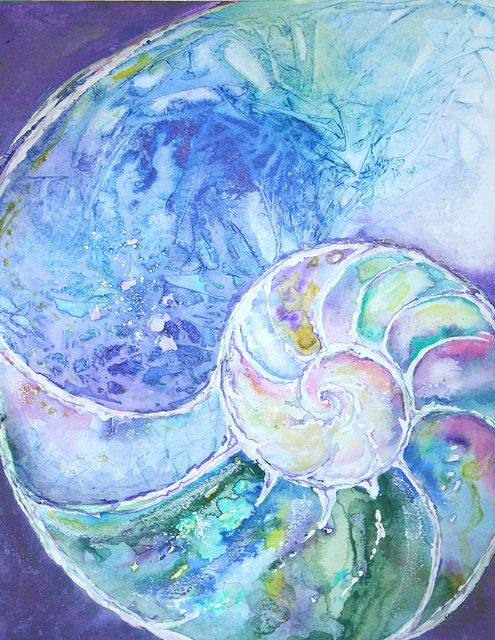 acrylic+paintings+of+nautilus+shell   Recent Photos The Commons Getty Collection Galleries World Map App ...