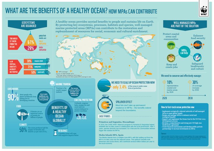 What are the benefits of a healthy ocean? WWF. Peruvian