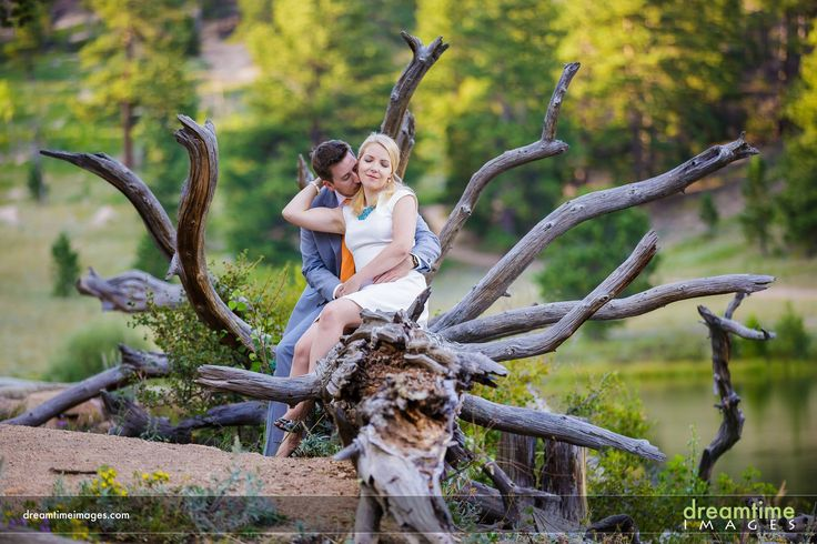 A couple kiss on a tree on the shore of a lake in Colorado