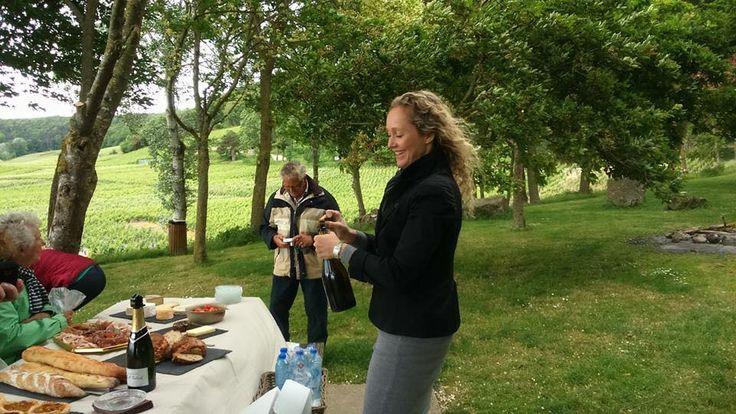 Een picknick tussen alle activiteiten door met een prachtig uitzicht op de wijngaarden. http://www.brouzje.nl/reizen