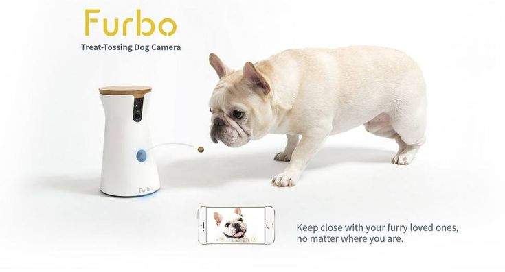 Furbo Dog Camera Treat Tossing, Full HD Wifi Pet Camera and 2-Way Audio, Designed for Dogs, Works with Amazon Alexa (As Seen On Ellen)#DogAnxiety #DogCamera #PetCameraMonitoringSystem #FurboDogCamera