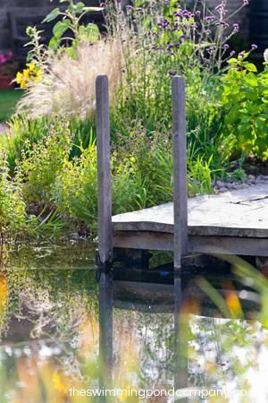 Design and construction of natural swimming ponds, natural swimming pools and…