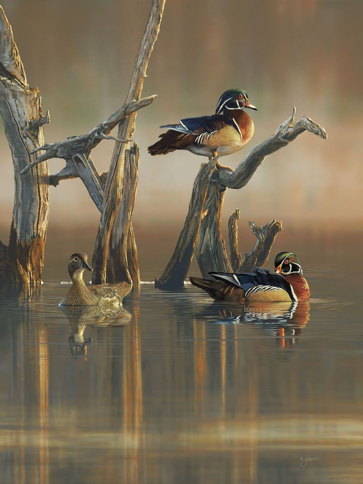 by Scot Storm   Ducks Unlimited 2014 Artist of the Year   Painting
