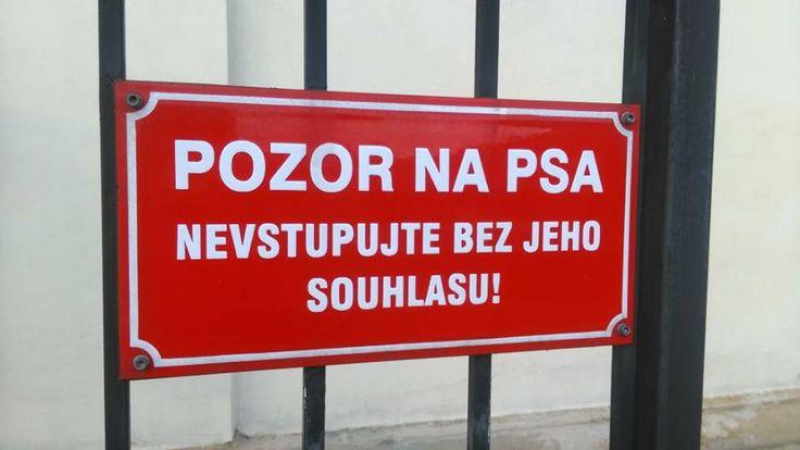 POZOR NA PSA - nevstupujte bez jeho souhlasu!