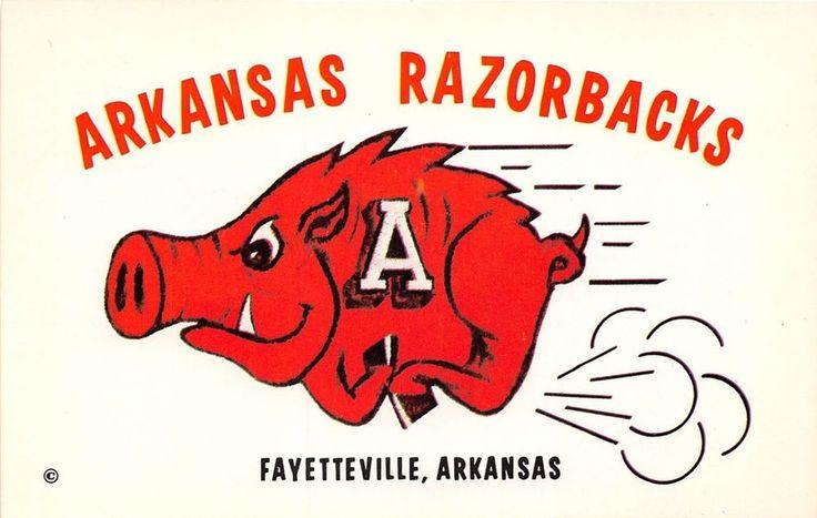 Arkansas postcard University of Arkansas Fayetteville Razorbacks mascot