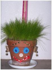 Grow Grass Hair!  Great math & science activity!