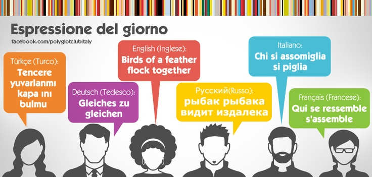 Idiom in 6 languages: Birds of a feather flock together
