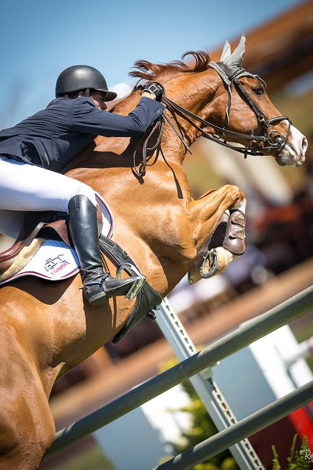 I love the way the camera is tilted and it's a perfect action shot of the horse…