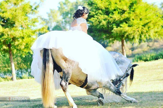 Instagram media by gp_cinema - #3#quinceañera#highlights#cinema#art#cowgirl#rancho