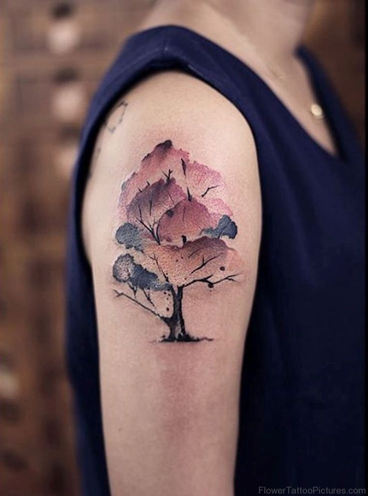 25 best ideas about magnolia tattoo on pinterest post for Tattoo post care