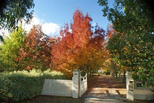 Tasmanian Gourmet Sauce Company - pretty garden