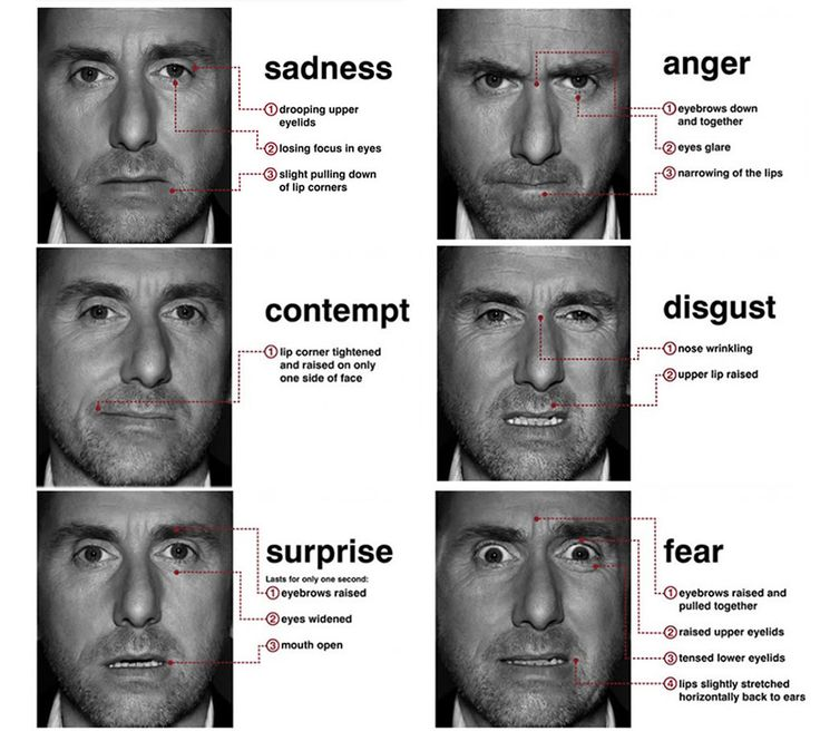 Micro expressions (from the tv series Lie To Me). I want to be able to see if someone is lying :D