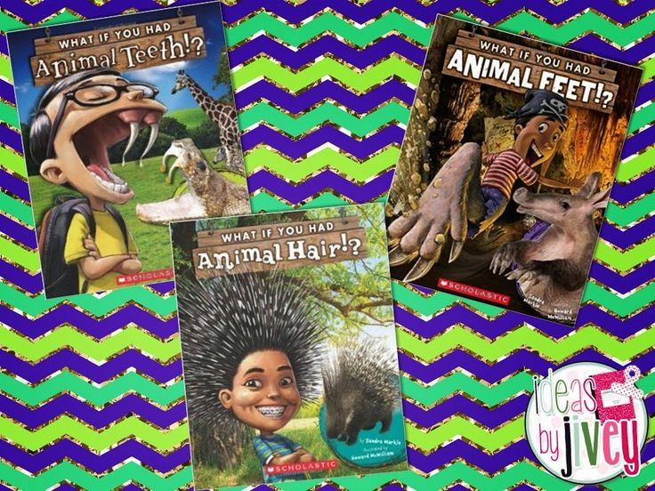 THREE great FREE activities to use with animal adaptations in science using Sandra Markle's books -Ideas by Jivey
