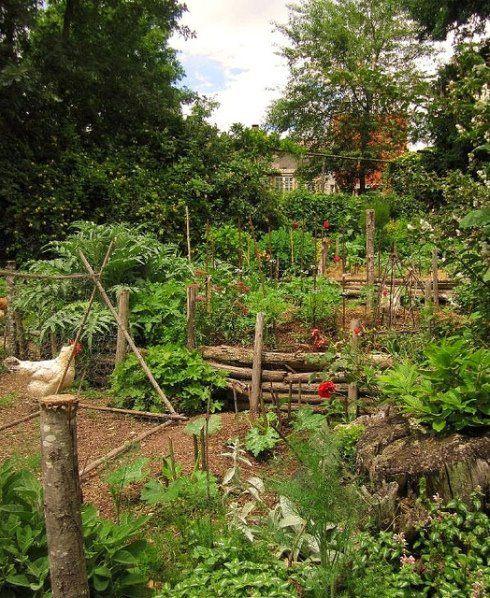 Country farm garden content in a cottage garden for Country vegetable garden ideas