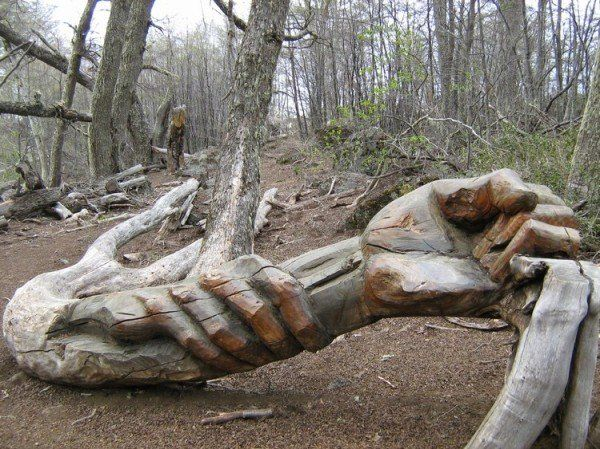1000 Images About Tree Carving On Pinterest Tree Trunks