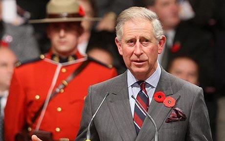 为什么英国人胸前都戴着小红花-新闻-琥珀教育