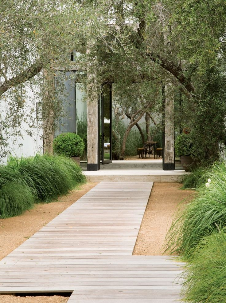 Native grasses, decomposed granite and a small grove of olive trees line the front walk.