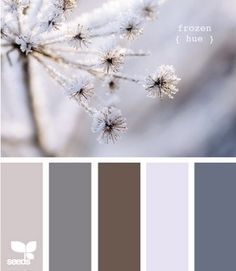 Blue, brown & grey color palette