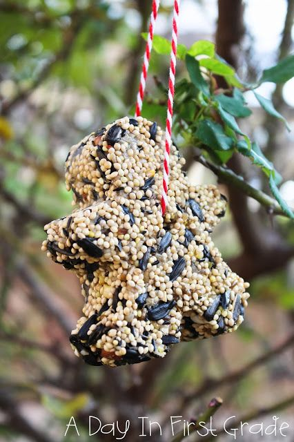 My class loved making these bird feeders in class! Super simple to make and an awesome science extension!