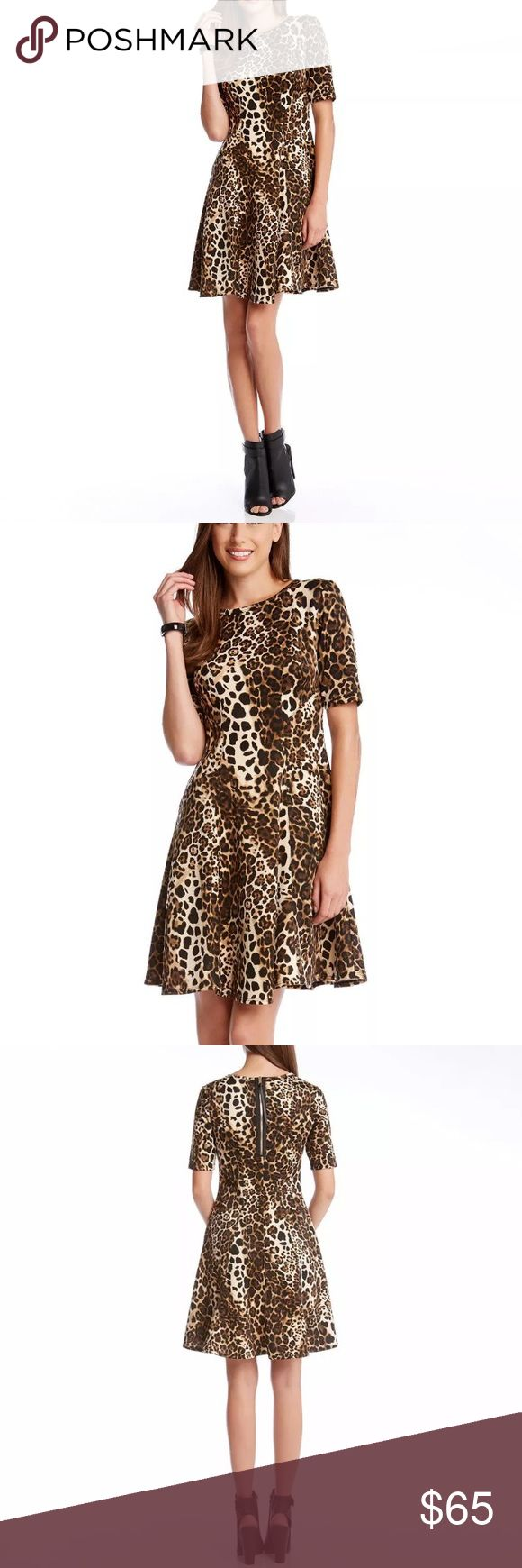 Karen Kane Scuba Fit & Flare Cheetah Dress NWOT Cheetah Print Half Sleeve XL Karen Kane Dresses Midi