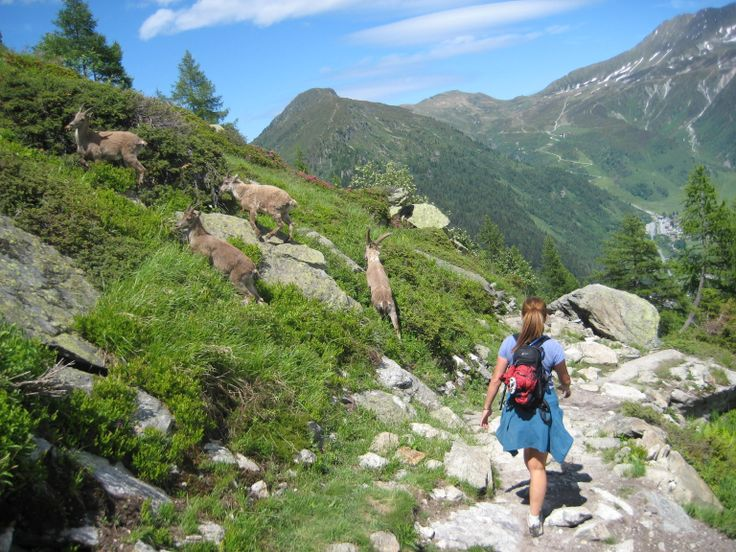 hiking in France - Lac Blanc