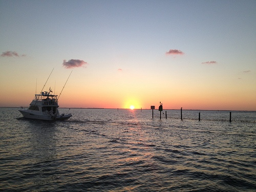 17 Best Images About Captiva Island On Pinterest