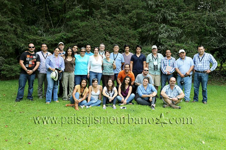 20 best curso de jardines verticales 2013 images on for Jardines verticales mexico