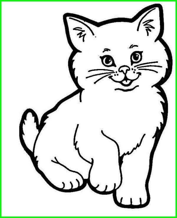 Gambar Kucing Lucu Imut Dan Paling Menggemaskan Sedunia Binatang Gambar Hewan Menggambar Kucing
