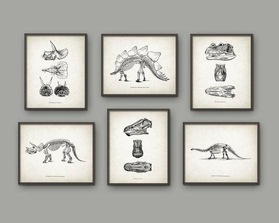 Dinosaur Print Set Of 6 - Dinosaur Skeleton - Prehistoric - Geology Student - Paleontology - Fossil Book Plate Illustration - Boys…