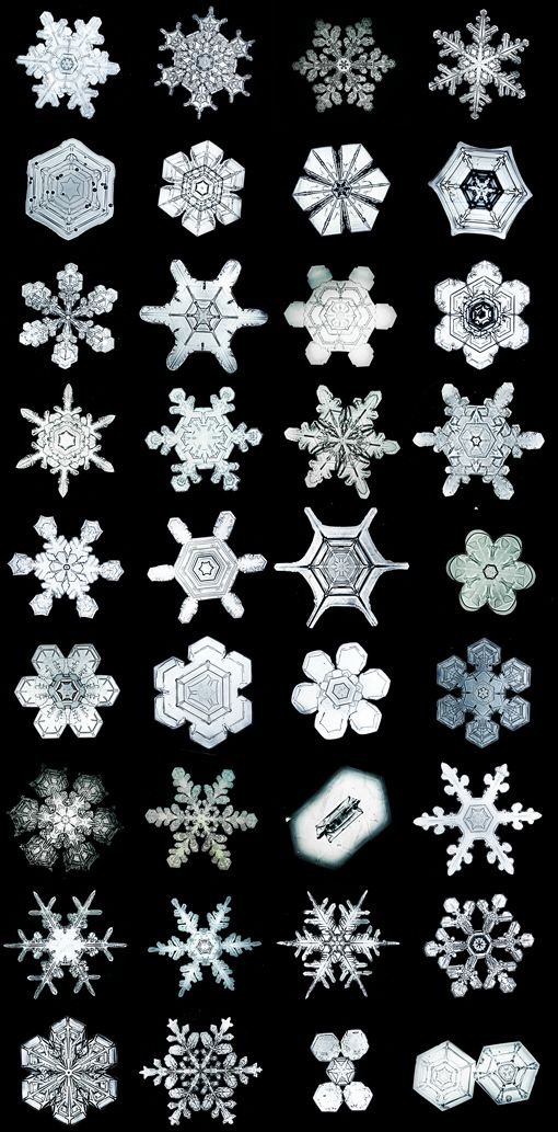 bentley collection of snowflake crystals...pretty amazing