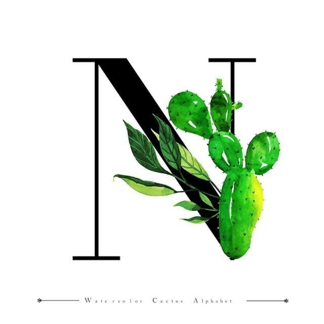 Alphabet Letter N Con Acuarela Cactus Y Hojas De Fondo Acuarela Color Floral Png Y Vector Para Descargar Gratis Pngtree Fondos De Cactus Letra N Pintura De Cactus