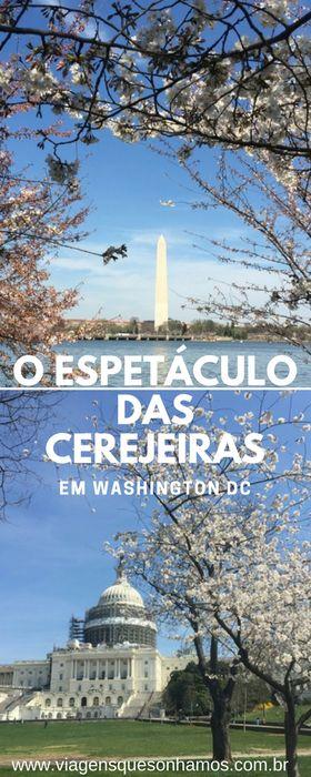 Na primavera a capital americana fica ainda mais encantadora com a florada das cerejeiras durante o Cherry Blossom Festival.